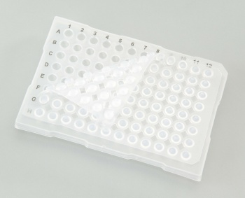 96 Well Sealing Mat, Silicone, Each